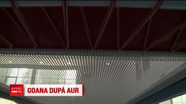 Marian Dragulescu nu se lasa! SURPRIZA pentru a 5-a olimpiada: romanul inventeaza doua sarituri noi!