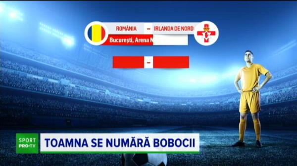 Toata Romania vede Romania! Unde se joaca meicurile toamnei pentru noua nationala a lui Radoi