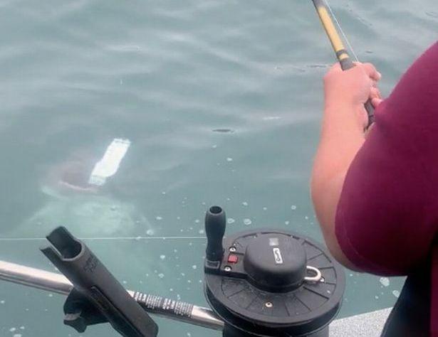 La un pas sa faca INFARCT cu undita in mana! O banala partida de pescuit s-a terminat cu URLETE de FRICA! Cu ce s-a trezit in carlig un pescar