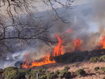 Un incendiu a izbucnit langa autostrada! Imaginile DRAMATICE care fac inconjurul lumii