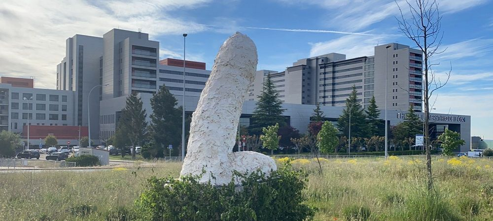 Statuia care a scandalizat un intreg oras! A fost pusa in fata unui spital, iar locuitorii au cerut sa fie distrusa imediat! Ce forma putea sa aiba