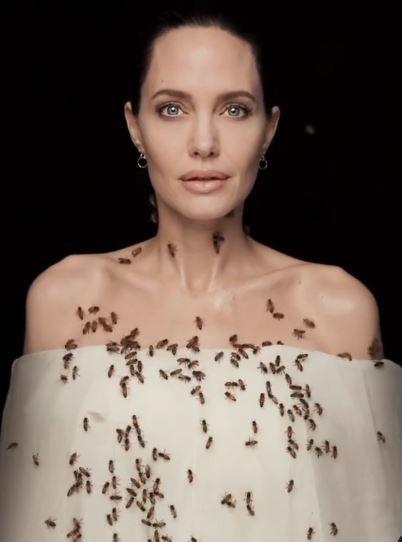 Imaginile cu Angelina Jolie care fac inconjurul lumii! S-a acoperit de albine dupa ce a stat trei zile fara sa se spele! Care a fost motivul