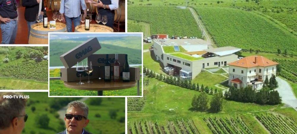 (P) Wine Trips Romania | Pe drumul vinului romanesc la Crama LacertA
