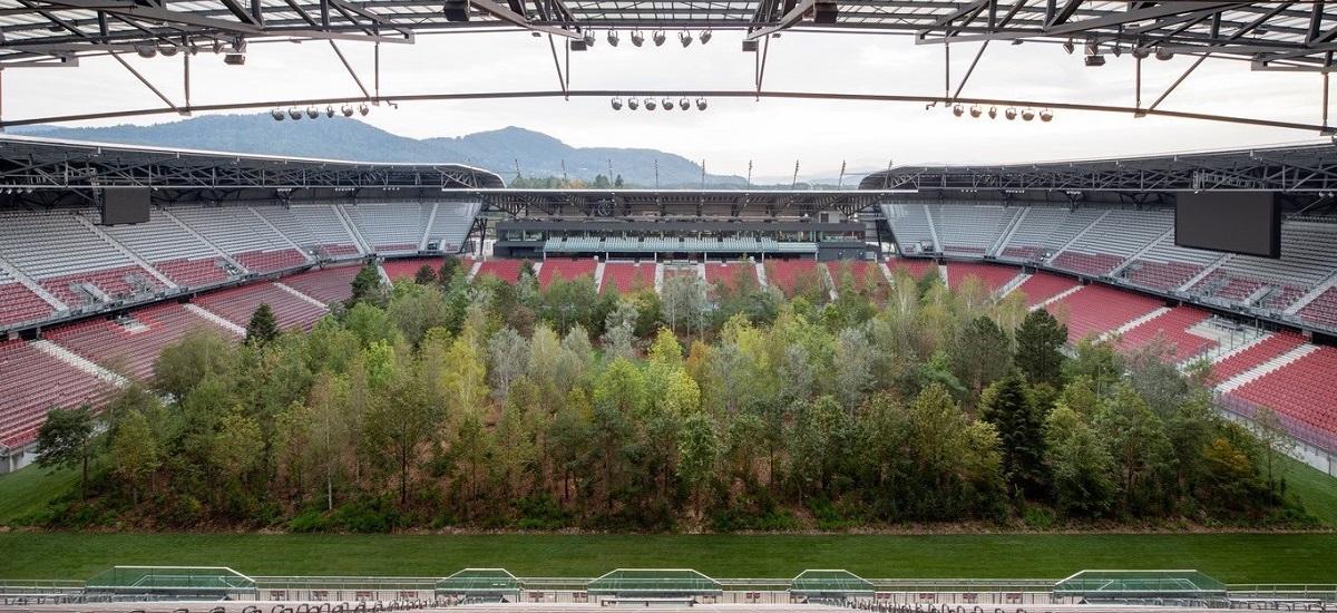 Stadion de EURO transformat intr-o PADURE! FOTO